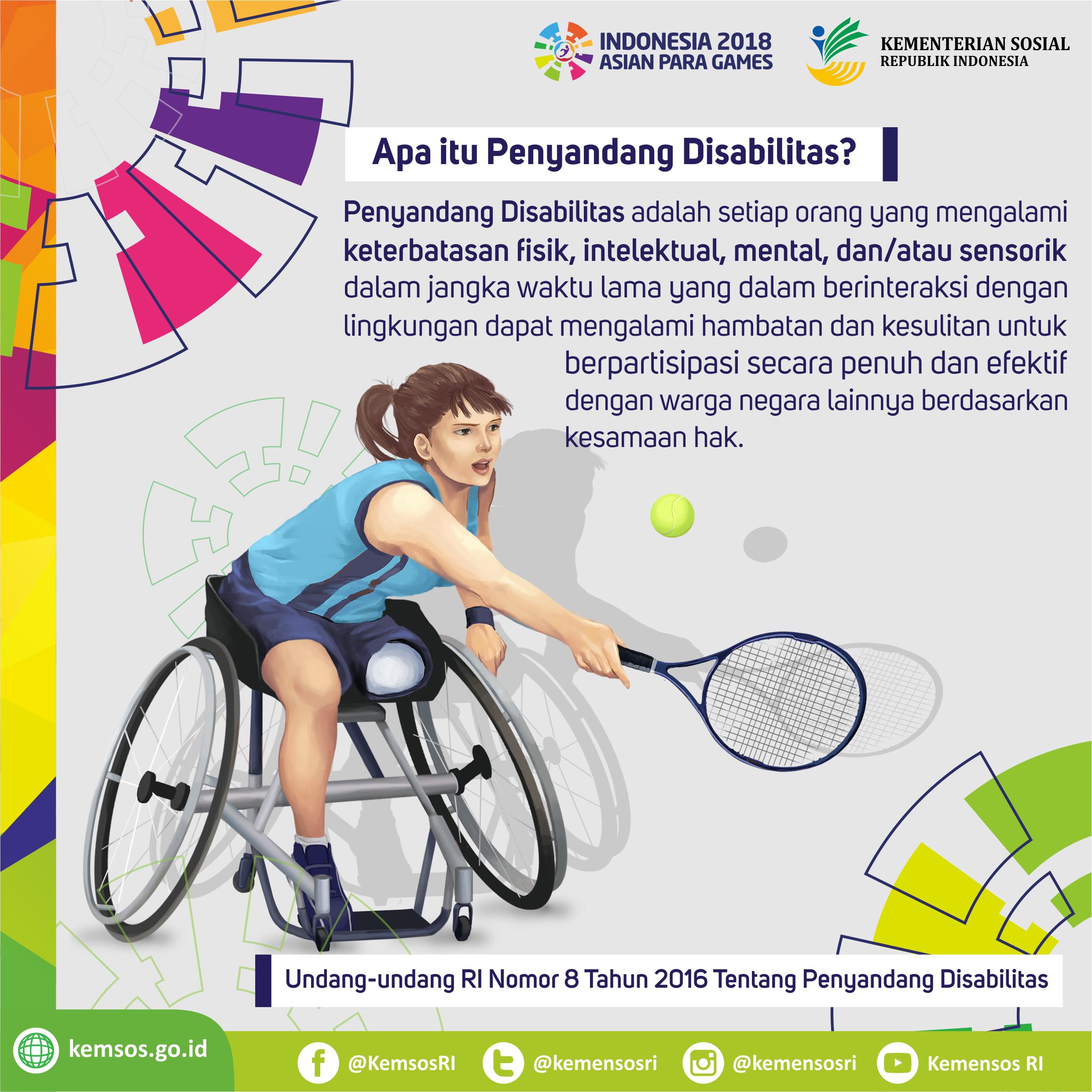 Definisi Penyandang Disabilitas
