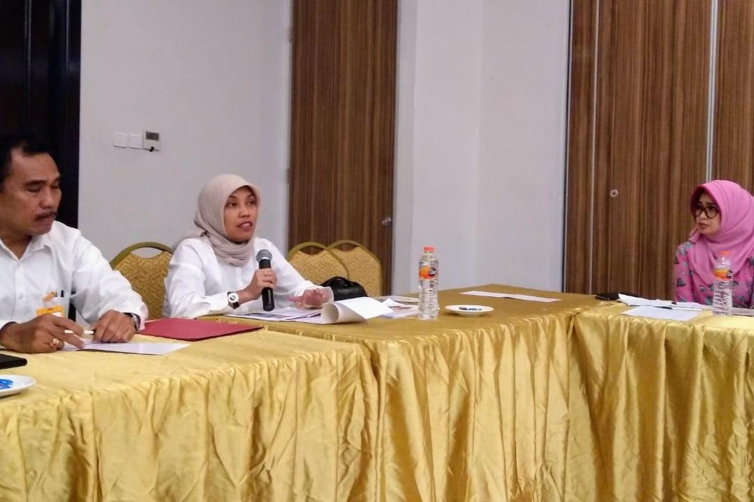 Dit PFM Wilayah II Selenggarakan Pratayang Rancangan Aplikasi Siveri