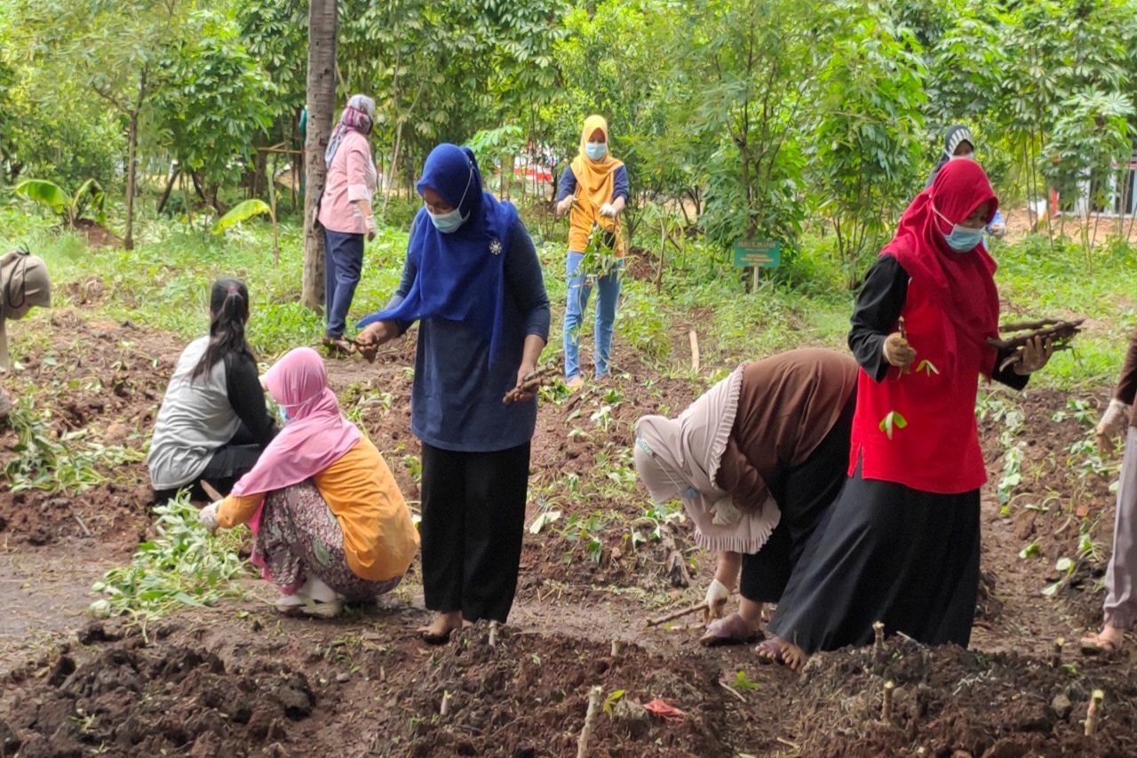 """Kreasi ATENSI """"Wujudkan Agrowisata Lansia untuk Kawasan Ramah Lansia"""""""