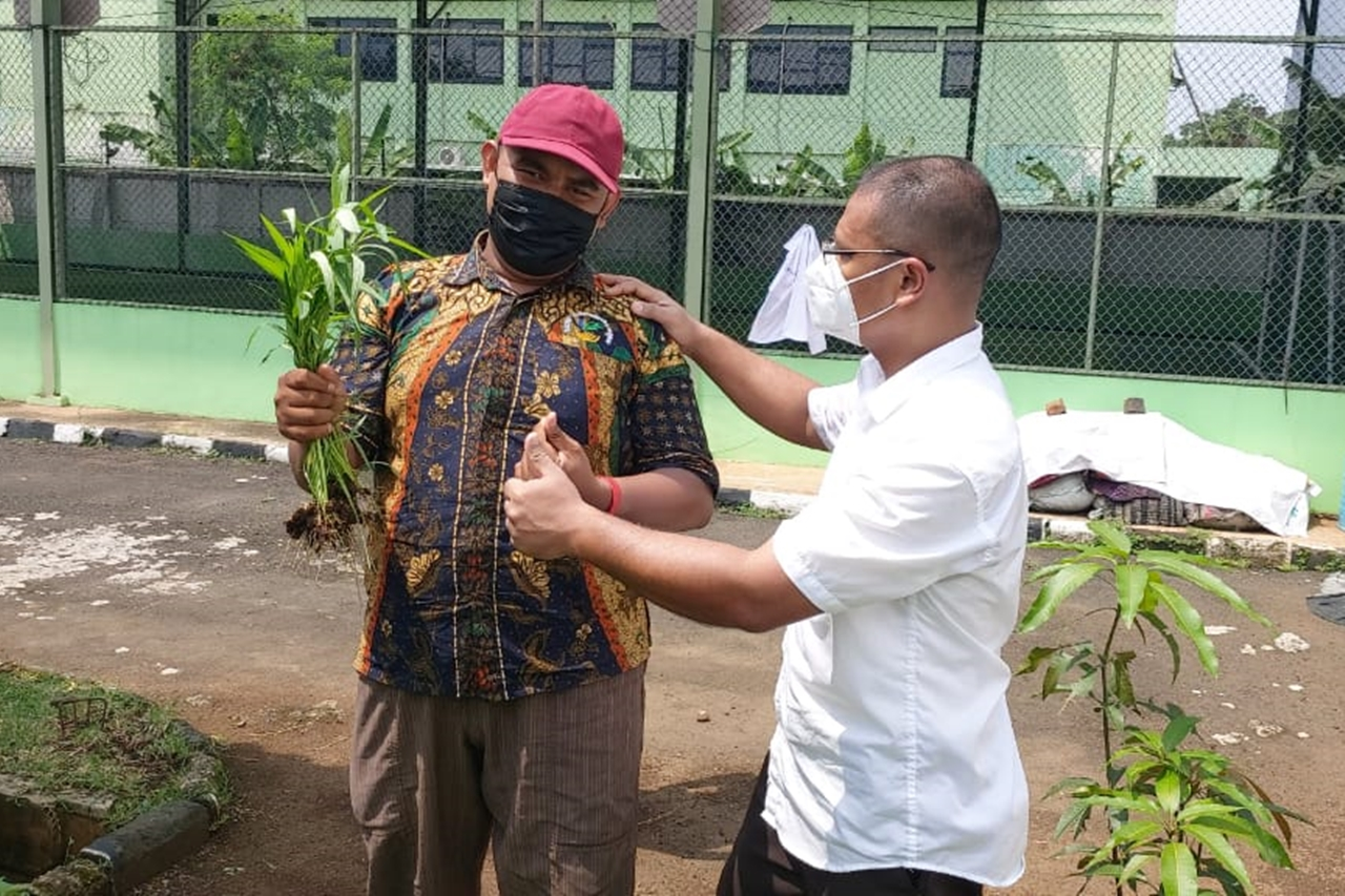"Penyandang Disabilitas Balai ""Ciungwanara"" Sukses Panen Kangkung"