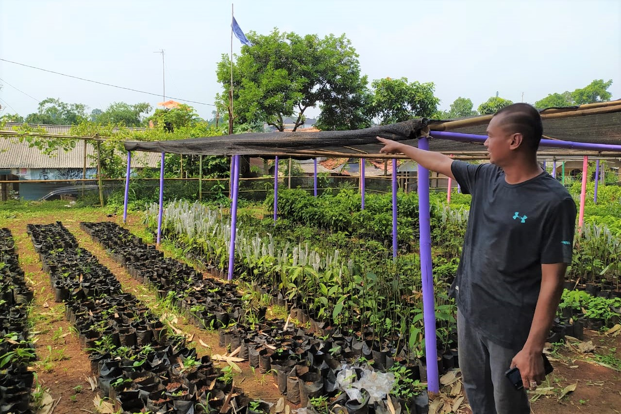 Karang Taruna Kecamatan Cibinong Berdayakan Masyarakat Lewat Pertanian