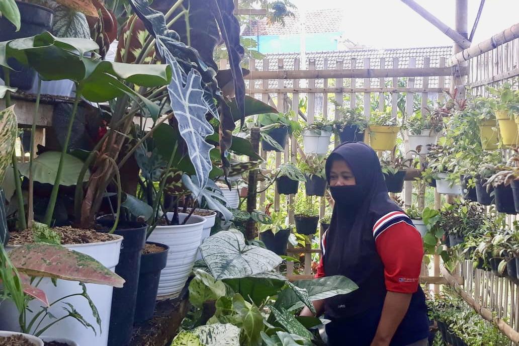 Bunga Hias, Antarkan KPM PKH Graduasi Mandiri
