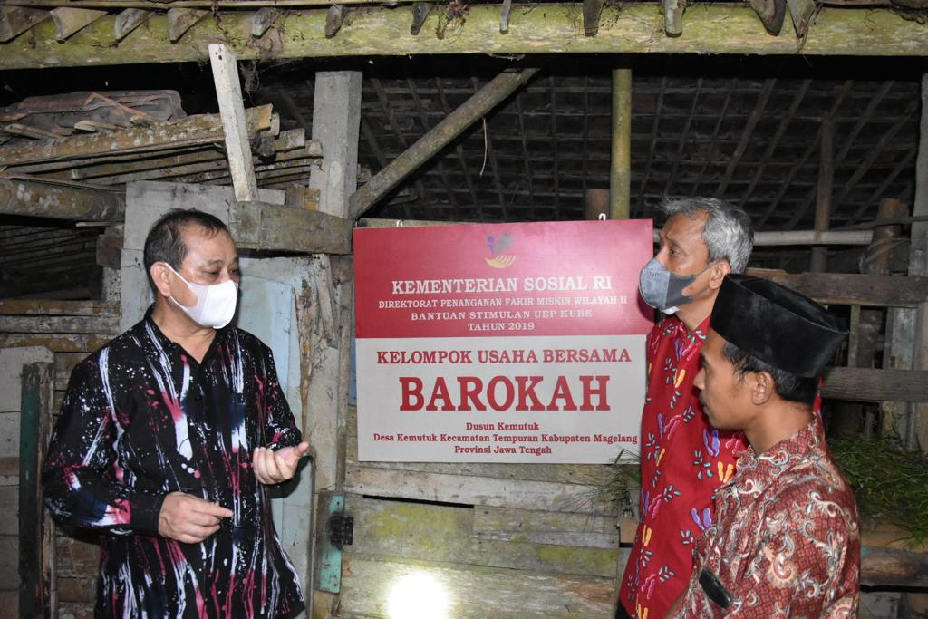 KUBE Barokah Beternak Sapi di Atas Gunung Untuk Bantu Berdayakan Masyarakat Miskin