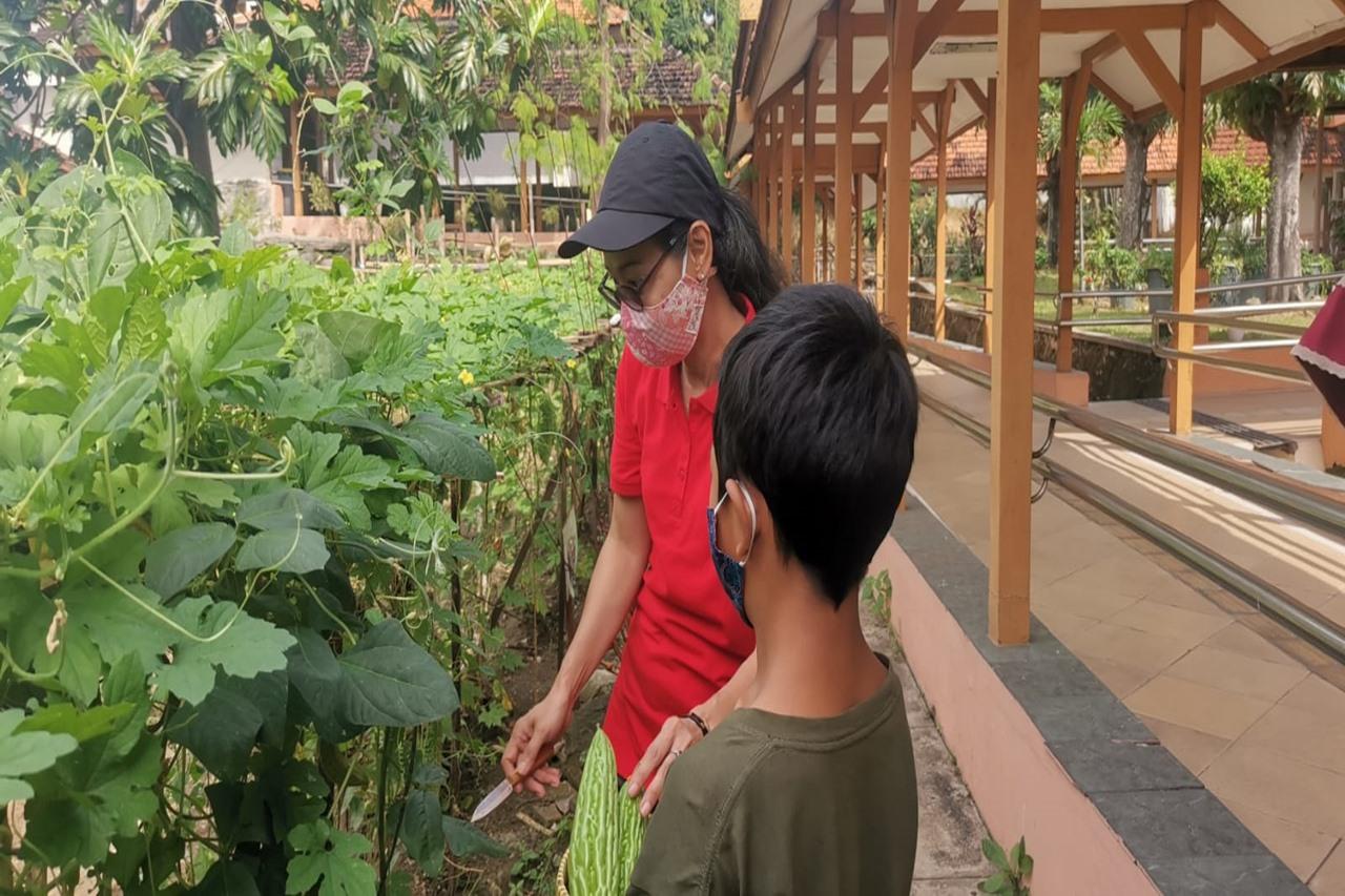 Balai Besar Soeharso Sumbangkan Hasil Panen Budidaya Tanaman Hortikultura dan Hidroponik